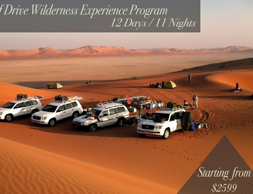 Self Drive Wilderness Experience